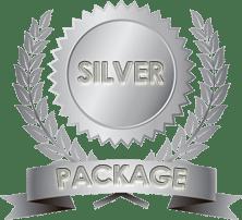 toplevel-sportswear-silver-logo-design