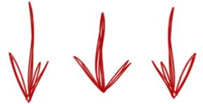 toplevel-sportswear-arrows